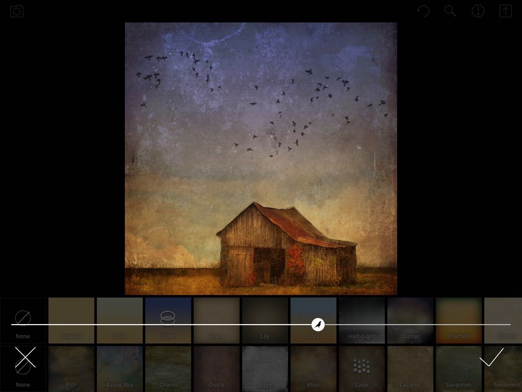 Screenshot showing an overlay of birds added to an image in DistressedFX (iPad version)