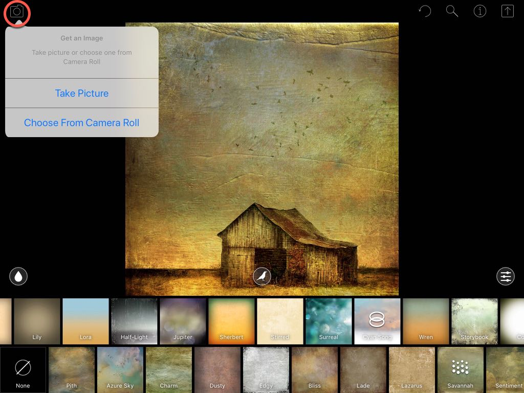 A screenshot showing the image import menu in DistressedFX (iPad version)