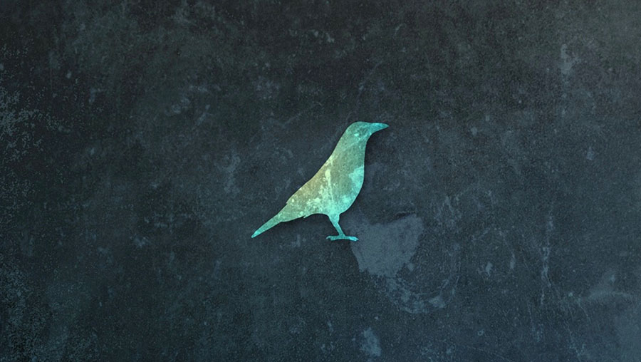 A screenshot of the DistressedFX splash page - a mottled background with a green bird logo