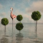 A surreal image of a flamingo amongst bushes in a seascape by Illusography artist Alan Brown