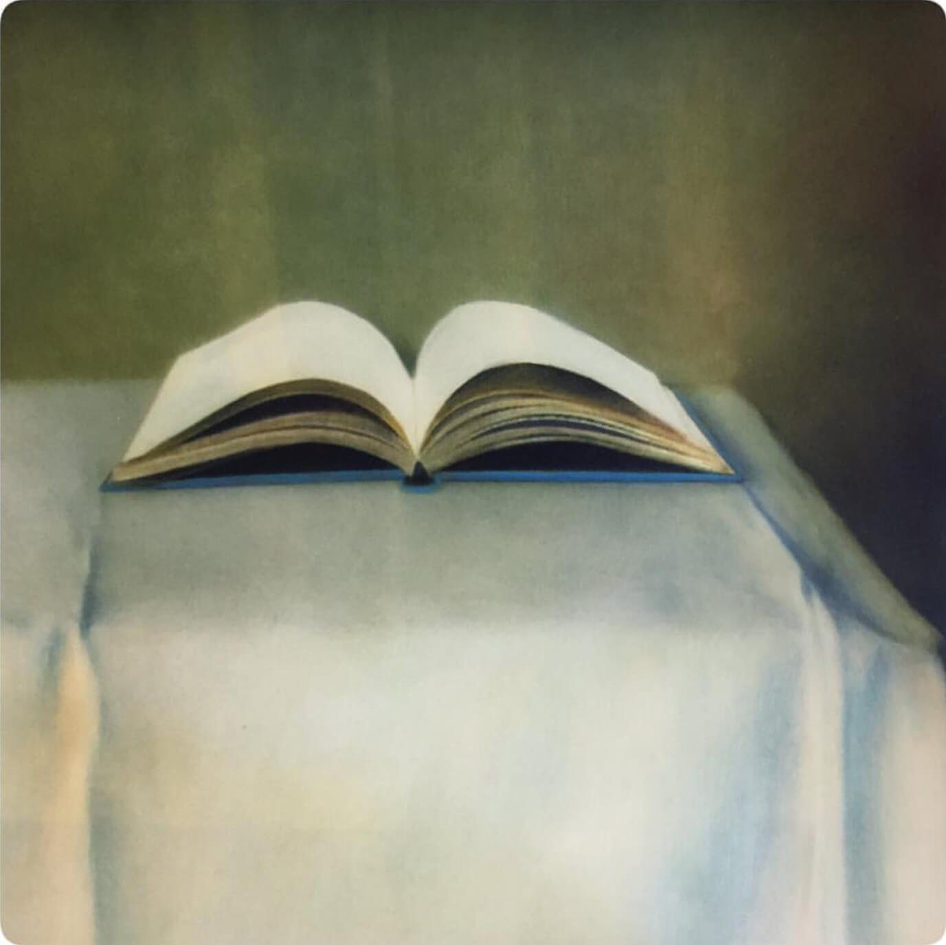 A painterly still-life image of an open book by featured artist, Ollie