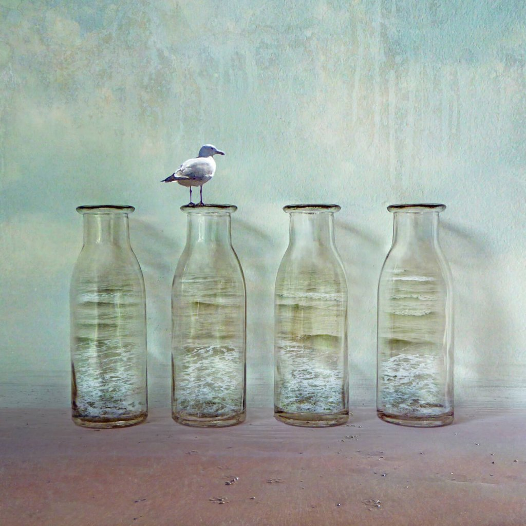 A photomontage image of bottles containing ocean waves, one with a seagull perched on top