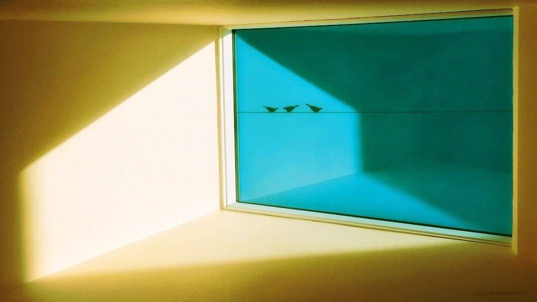 A serene, minimalist image of a room divided by a window with three birds on a line