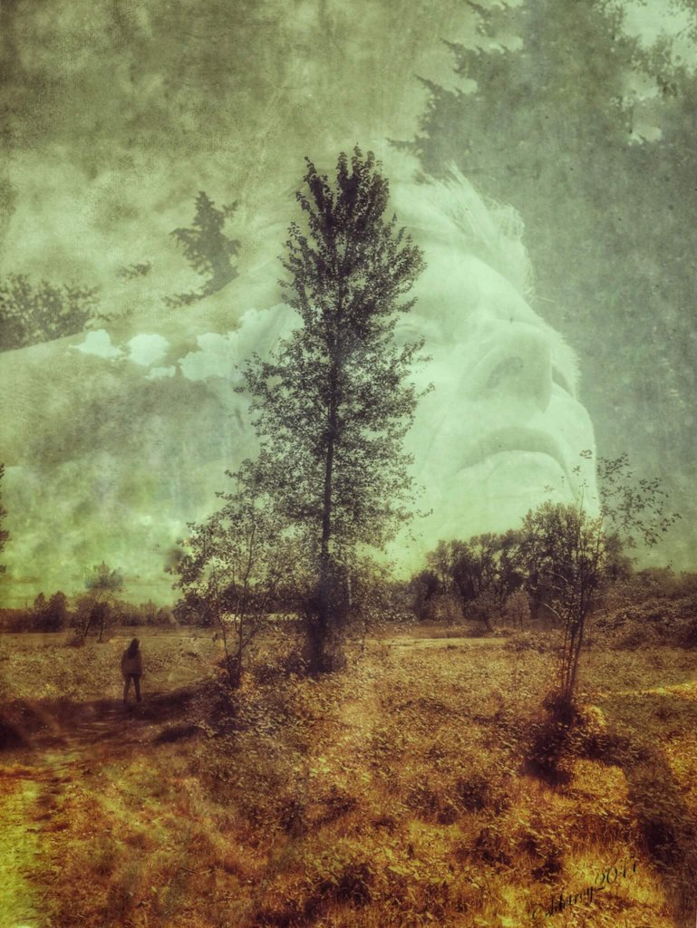 A soulful double-exposure image featuring a self-portrait of the artist with old photos and natural elements