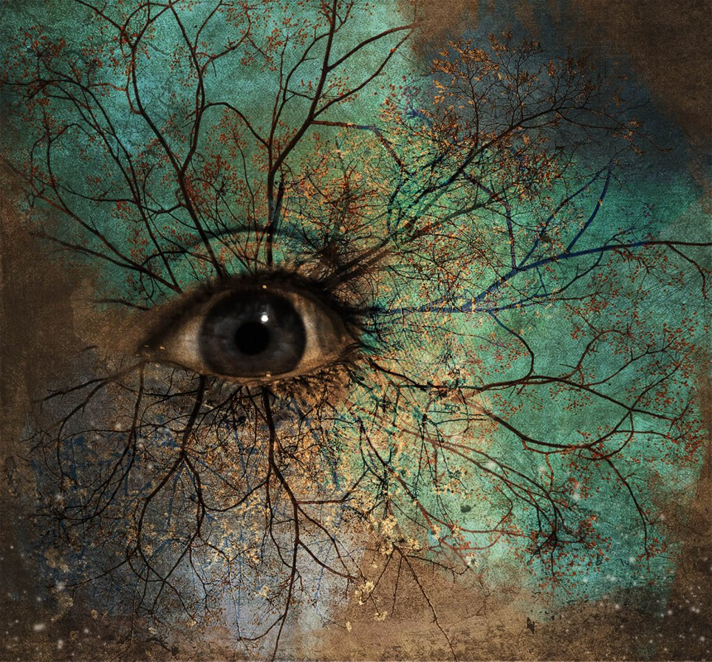 A 'Photoimagination' image of an eye with tree-like lines emanating